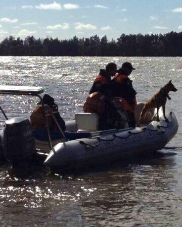 Perros de búsqueda de restos humanos:
